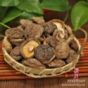 dried mushroom(shiitake) - product's photo
