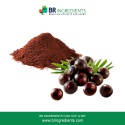 acai berry powder - product's photo