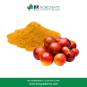 camu camu cherry extract powder - product's photo