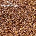 organic red quinoa grain - product's photo