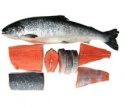 fresh and frozen atlantic salmon fish - product's photo