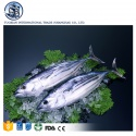frozen seafood bonito tuna fish - product's photo