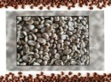 100% arabica green coffee bean - product's photo