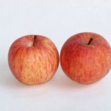 red fuji apple fruit - product's photo