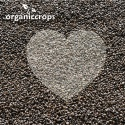 organic black chia seed - product's photo
