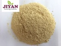 dehydrated garlic powder indian spices - product's photo