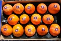 persimmon wholesale in spain - product's photo