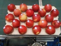 aa best price fresh apple fruits fuji apple supplier - product's photo