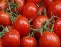 fresh cherry tomatoes for sale - product's photo