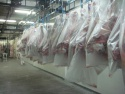 beef carcass uruguay - product's photo