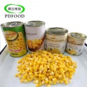 canned sweet corn - product's photo