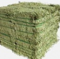 alfalfa hay for sale - product's photo