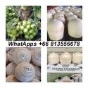 fresh young coconut ,fresh coconut , fresh namhom coconut , easy open - product's photo