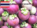 mangoteen, thai mangoteen, mangoteen freeze, thai fruits - product's photo