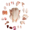 halal chicken feet / frozen chicken paws brazil / fresh chicken wings - product's photo