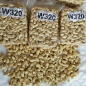 cashew nut/cashew nut kernels/w240/w320 for export - product's photo