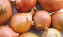 onion of caliber 5+ - product's photo