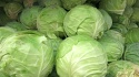 cabbage 1kg - product's photo