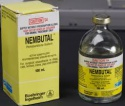 buy nembutal solution, buy pentobarbital sodium, order nembutal oral  - product's photo