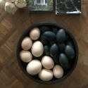 ostrich chicks and fertile eggs for sale - product's photo