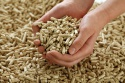 wood pellets 6mm din+ - product's photo