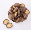 natural organic dried mushrooms - product's photo