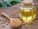 soybean oil - product's photo