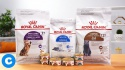 top quality royal canin dog & cat food & breed specific  - product's photo