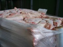 frozen pork hind legs  - product's photo