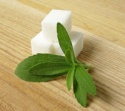 stevia sugar in bulk - product's photo