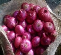egyptian red onion (grade a) for sale..whatsapp: +4565743935 - product's photo