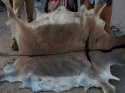 high quality wet salted donkey hides -well processed - product's photo