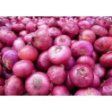 onions for sale  - product's photo