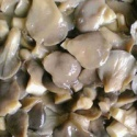 canned oyster mushroom - product's photo