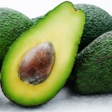 agriculture fresh avocado in avocados organic hass avocado for sale  - product's photo