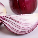 fresh excellent grade vegetable best price red onion  - product's photo
