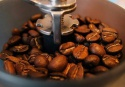 natural roasted arabica and robusta coffee beans ready  - product's photo