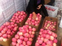 first class quality fresh gala apples available for sale - product's photo