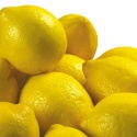 fresh lemon best quality  - product's photo