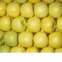 grade fresh apples/polish apples/2017 new fresh fruits red fuji apples - product's photo
