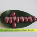 supply small red kidney beans - product's photo