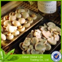 mushrooms - product's photo