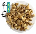 oyster mushrooms - product's photo