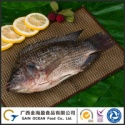scaled fish natural tilapia - product's photo