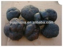 black truffle - product's photo
