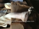 frozen beef ears - product's photo
