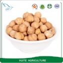 9mm kabuli chickpeas - product's photo