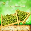 jsx china grade a mung dal high quality excellent new crop green mung beans - product's photo