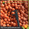 high quality fresh carrot ball - product's photo