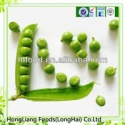 delicious canned green peas fresh in 400g tin - product's photo